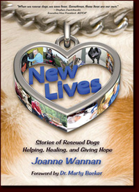 New Lives by Joanne Wannan