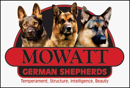Mowatt German Shepherds