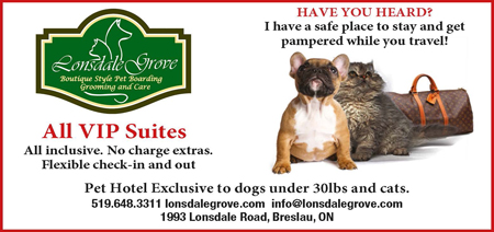 Lonsdale Grove, Boutique Style Pet Boarding, Grooming and Care