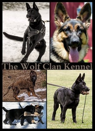 The Wolf Clan Kennel