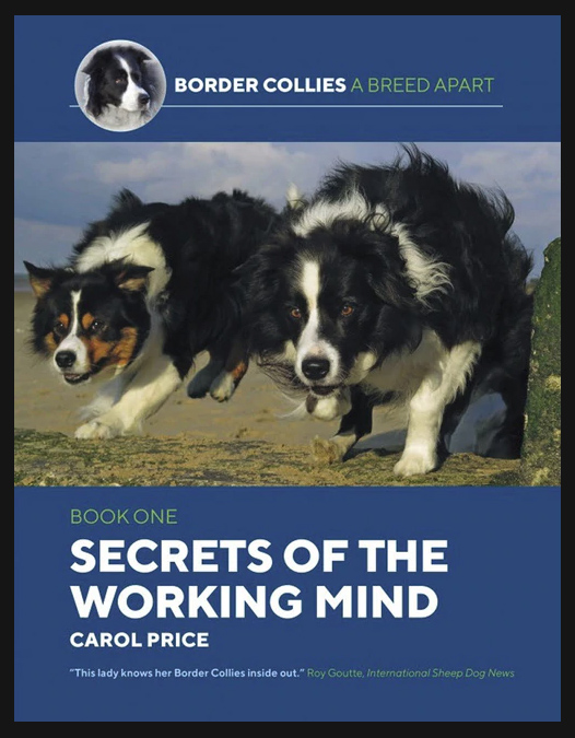 Secrets of the Working Mind