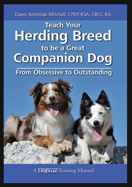 Herding Breed
