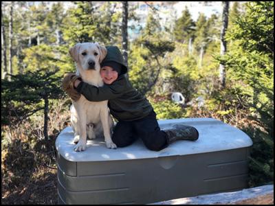 Labrador Retriever Breeders - Doindogs Kennel